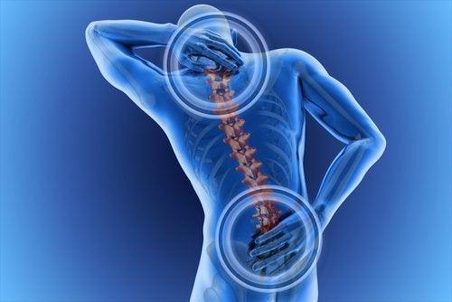 Kręgosłup, a bolące plecy