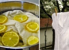 Cytryna pomoże Ci wybielić pranie