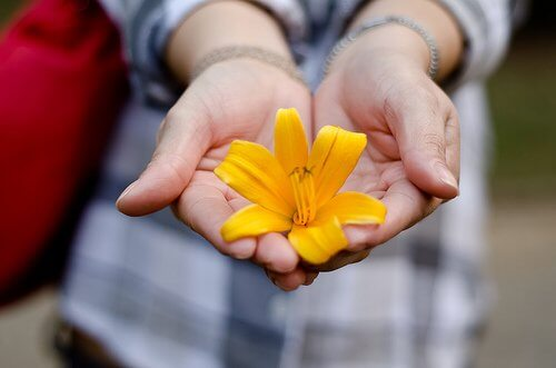 Zadbane dłonie i kwiat
