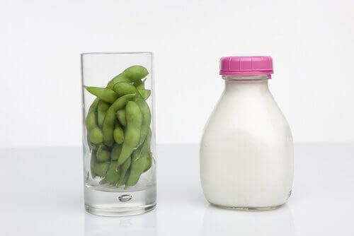 Fasola i mleko