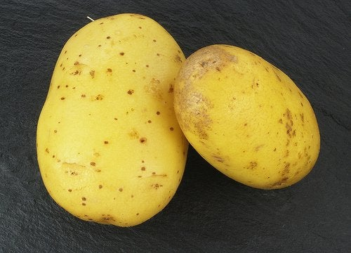 Młode ziemniaki