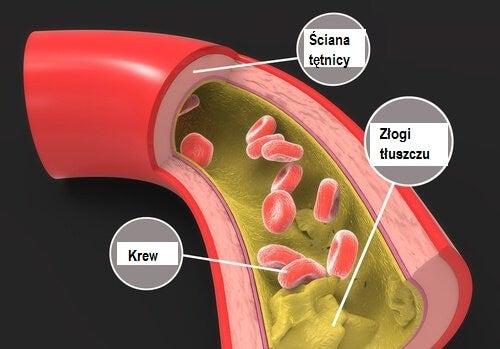 Triglicerydy
