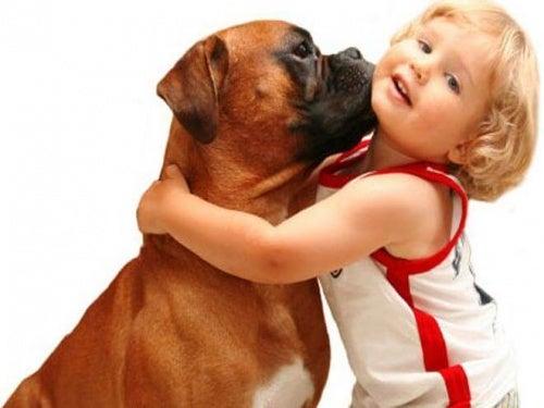 Zabawy dzieci z psem