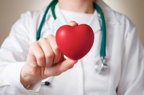 lekarz trzyma plastikowe serce