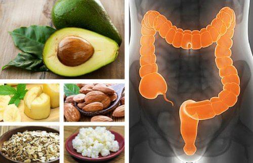 Zdrowe jelita – 3 niezbędne kroki