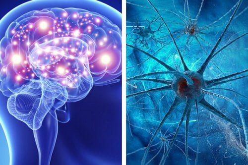Neurony — kilka nawyków, które je niszczą