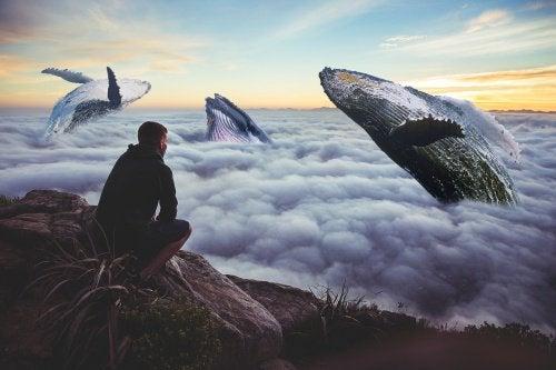 człowiek nad morzem a teoria sisu