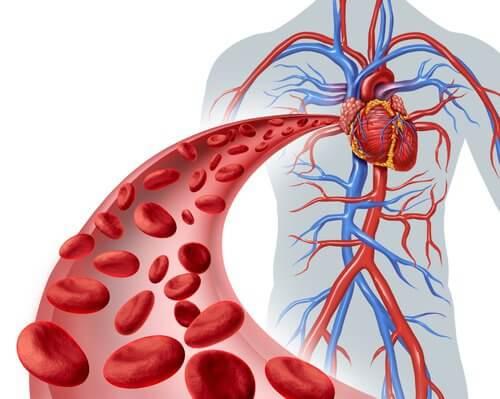Nadciśnienie tętnicze a zdrowie nerek