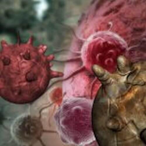 8 produktów spożywczych powodujących raka
