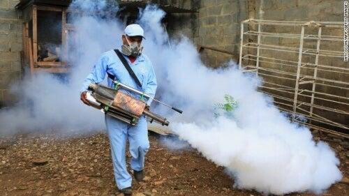 Kontrola populacji komarów
