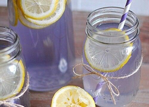Lemoniada z lawendy