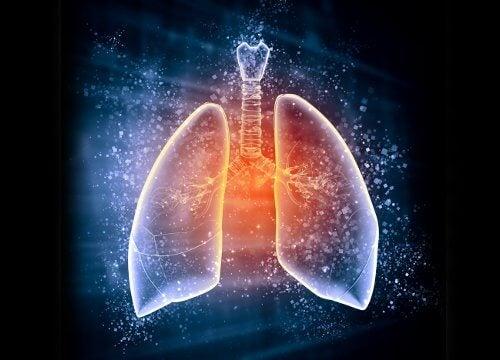 wpływ czosnku na płuca