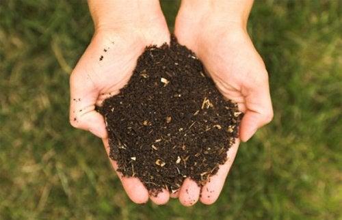 Jeden z nawozów ekologicznych