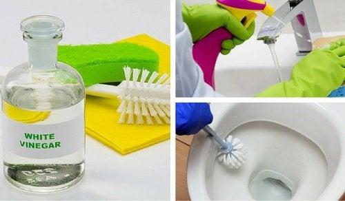Ocet Najlepszy środek Do Czyszczenia łazienki Krok Do