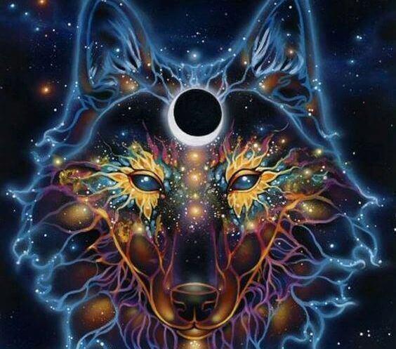 Wilk i kosmos