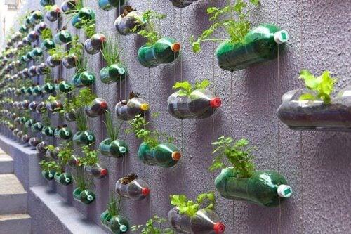 Plastikowe butelki na ścianie w formie doniczek