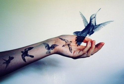 Ptak i dłoń