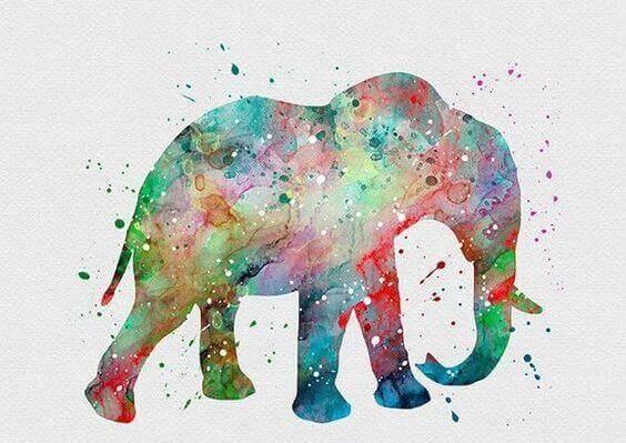 Kolorowy słoń