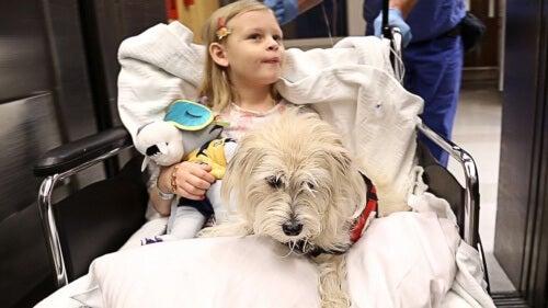 szpital - dziewczynka i pies