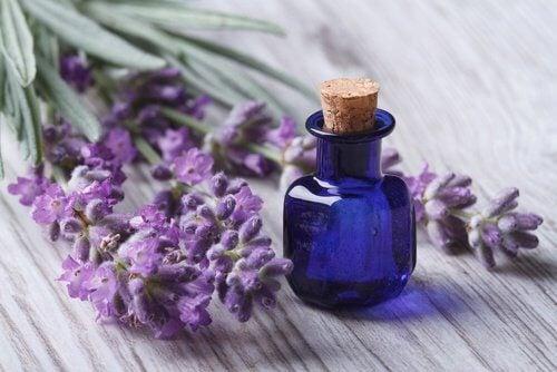 olejek eteryczny na ból głowy
