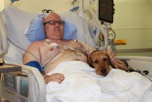 pies w szpitalnym łóżku ze swoim panem