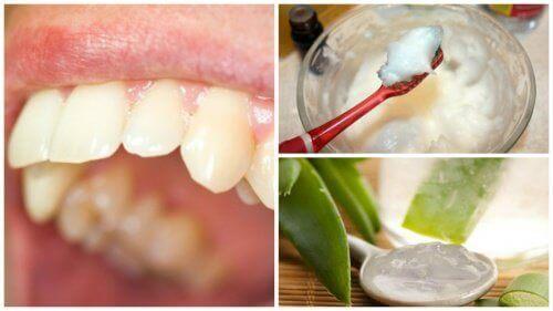 Zęby szczoteczka pasta