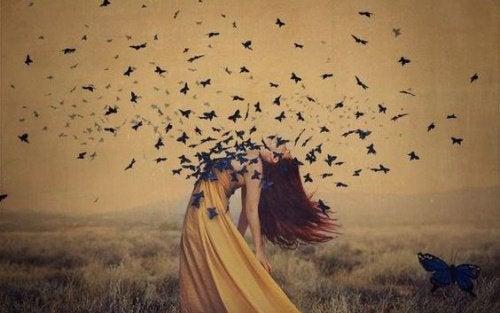 Wybaczenie ma postać motyli