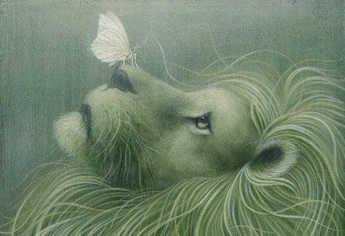 Lew z motylem