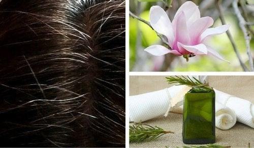 Chcesz ukryć siwe włosy? Poznaj doskonałe i skuteczne naturalne farby!