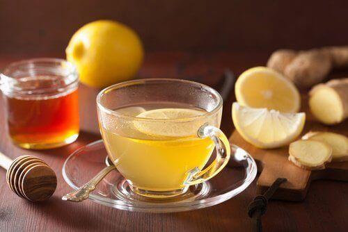 Cytryna i imbir - składniki naparu
