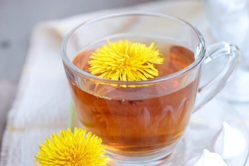 herbatka z mlecza
