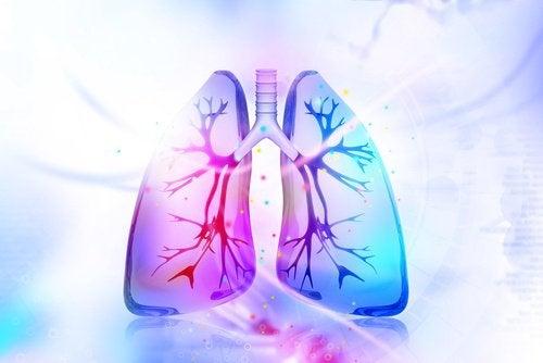 Nikotyna – 7 produktów, które oczyszczą twój organizm