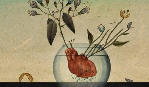 Serce-roślina
