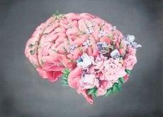 Uprzejmość a mózg