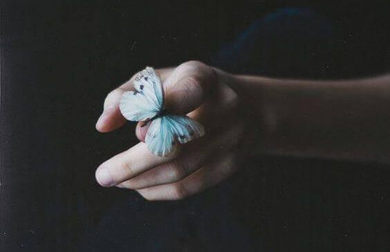 motyl na palcu