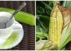 Znamiona kukurydzy