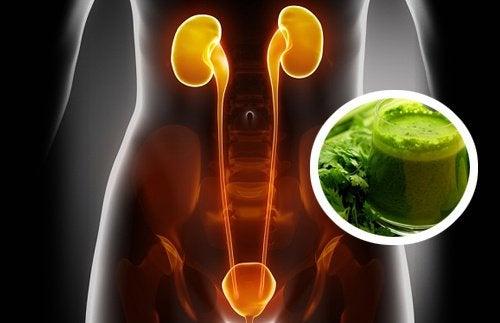 Nerki i zielony oczyszczający sok