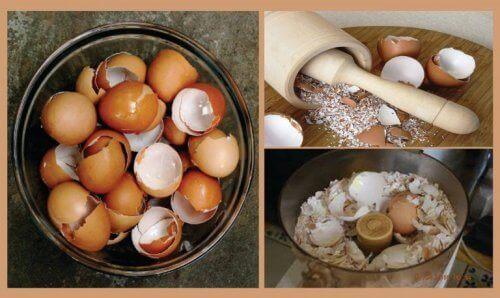 Skorupki jaj – odkryj 6 naturalnych lekarstw