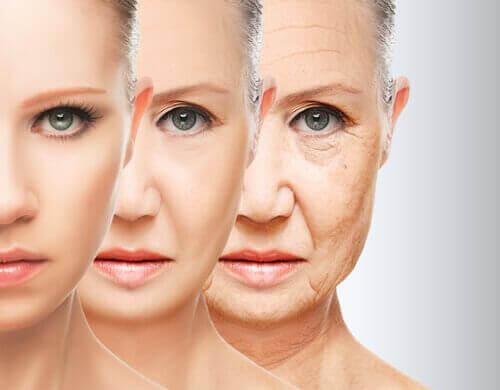 Wiek Twojego ciała – Jaki jest prawdziwy?