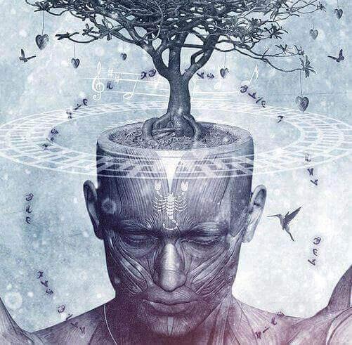 Drzewo wyrastające z głowy