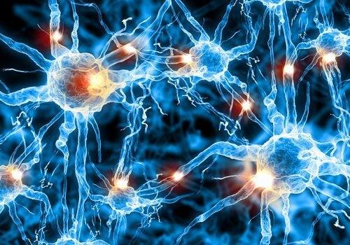 Neurony a mówienie przez sen