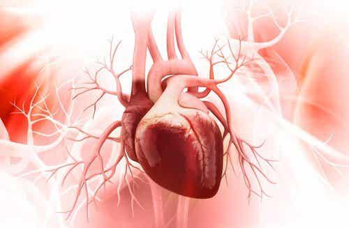 Serce - 8 złych nawyków, które mogą je uszkodzić