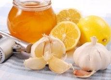 cytryna, czosnek i miód