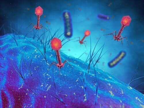 Infekcje wirusowe – czy wiesz, jaki wpływ na nie mają wakacje?