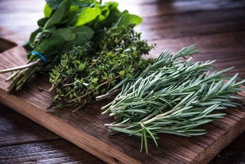 aromatyczne zioła