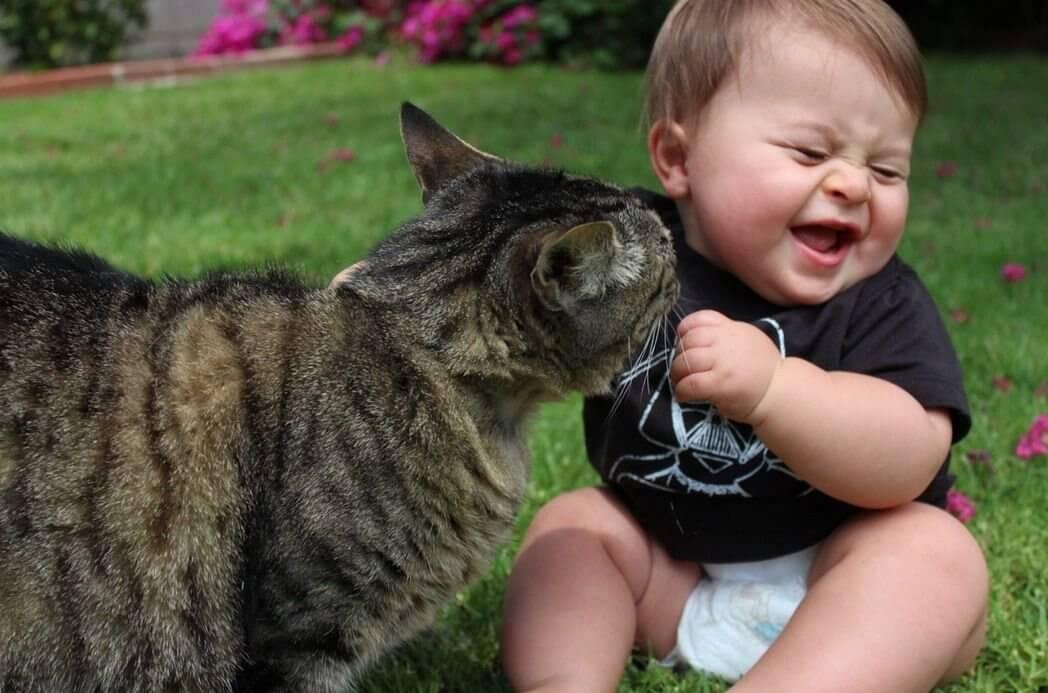 Dziecko i kot