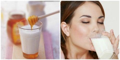 Mleko z miodem – oto 7 powodów, dla których warto wypić je przed snem