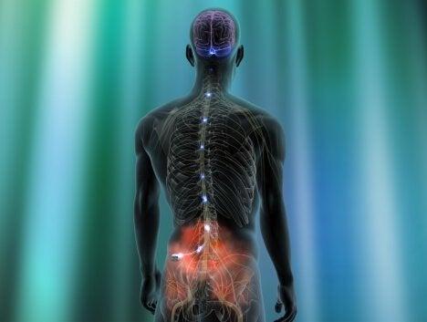 neurostymulator - ból nuropatyczny w dole pleców