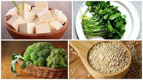 Gdzie znajdziesz białko roślinne? Przekonaj się!