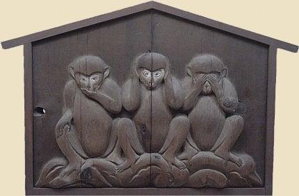 Lekcja od małpek
